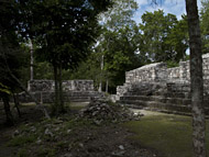 Northeast Temple Group at Calakmul - calakmul mayan ruins,calakmul mayan temple,mayan temple pictures,mayan ruins photos