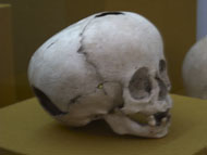 Small Pumpkin Shaped ET Skull in the Merida Museum - et influences mayans,mayan skull